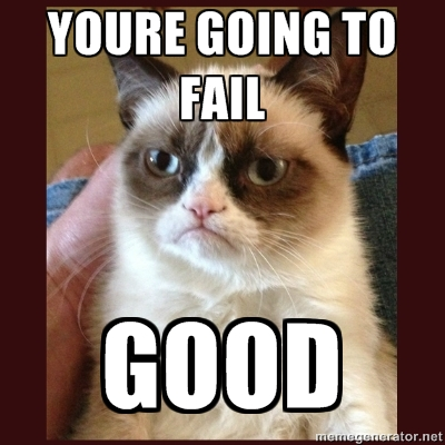 Image result for grumpy cat fail
