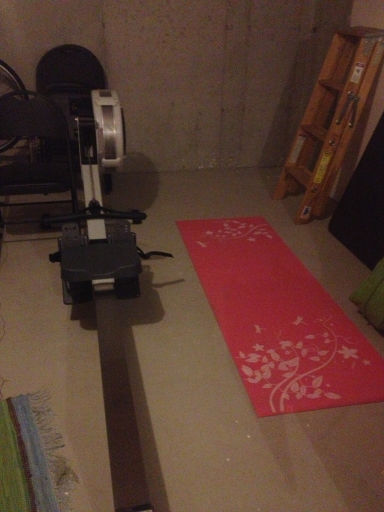 Part of the torture dungeon, erm...home gym