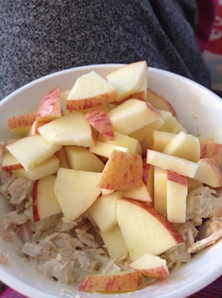 Tuna with homemade Paleo mayonnaise and apple slices